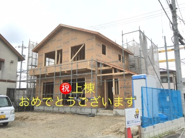 IMG_4265